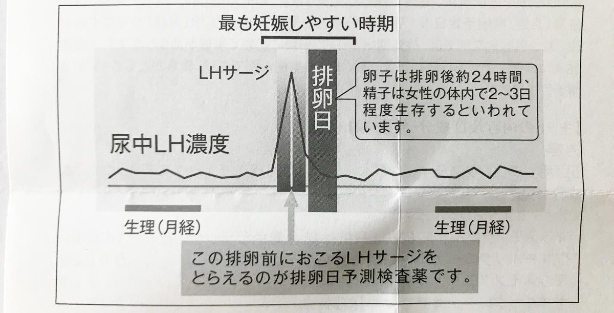 尿中LH濃度のグラフ